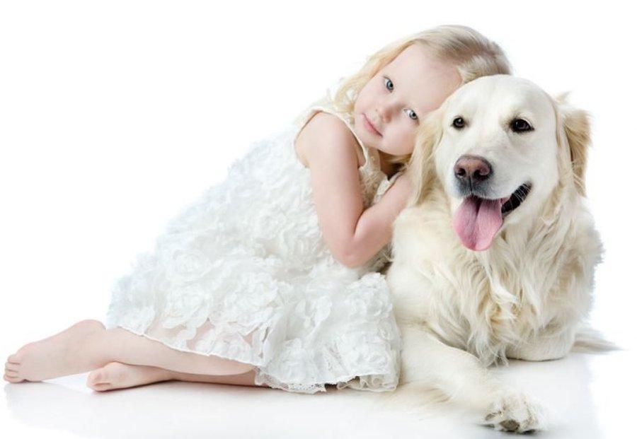 TENHO ALERGIA A ANIMAIS – O QUE FAZER?
